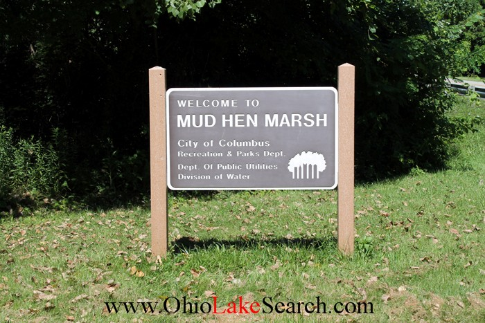 Mud Hen Marsh at Hoover Reservoir Ohio